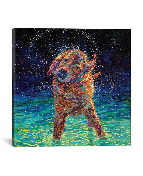 "iCanvas Moonlight Swim by Iris Scott Wrapped Canvas Print - 26"" x 26"""