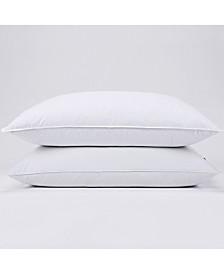 Puredown Pillow Queen Set of 2