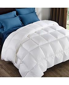 Comforter Queen