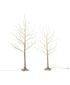 Everlasting Glow 4-Foot High Electric Birch Tree with Mini LED Lights