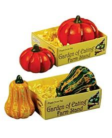 American Pumpkin and Gourd Set