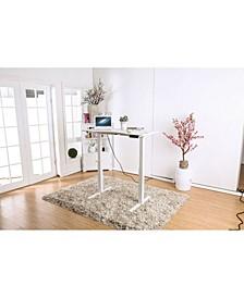 Metallic Desk with Height Adjustable Function