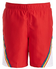 Big Boys Colorblocked Swim Shorts