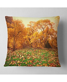 "Designart Beautiful Autumn with Green Grass Landscape Printed Throw Pillow - 16"" x 16"""