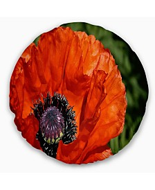 "Designart Close Up View of Red Poppy Flower Floral Throw Pillow - 20"" Round"