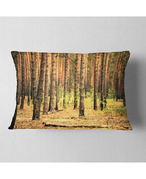 """Design Art Designart Beautiful Pine Forest At Sunset Modern Forest Throw Pillow - 12"""" X 20"""""""