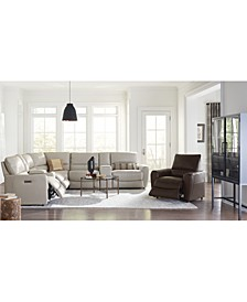 Danvors Leather Sectional Collection