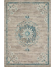 Lorem Lor1 Gray Area Rug Collection