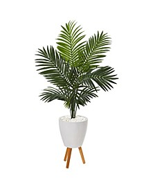 """61"""" Paradise Palm Artificial Tree in White Planter with Stand"""