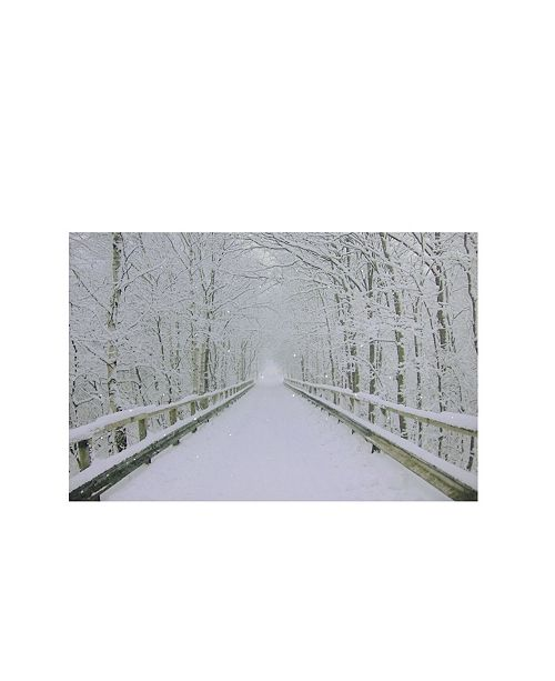 "Northlight Small Fiber Optic Lighted Winter Wooden Bridge Canvas Wall Art, 12"" x 15.75"""