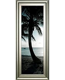 """Cool Bimini Palms Il by Susan Bryant Framed Print Wall Art - 18"""" x 42"""""""