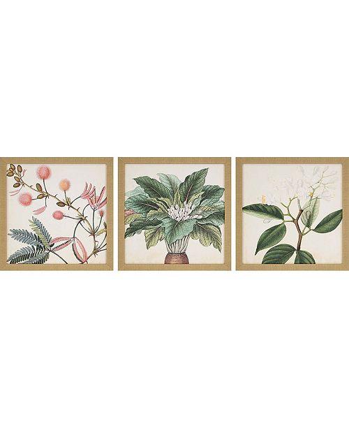 """Paragon Garden II Framed Wall Art Set of 3, 18"""" x 18"""""""