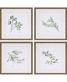 """Herbs Framed Wall Art Set of 4, 17"""" x 17"""""""