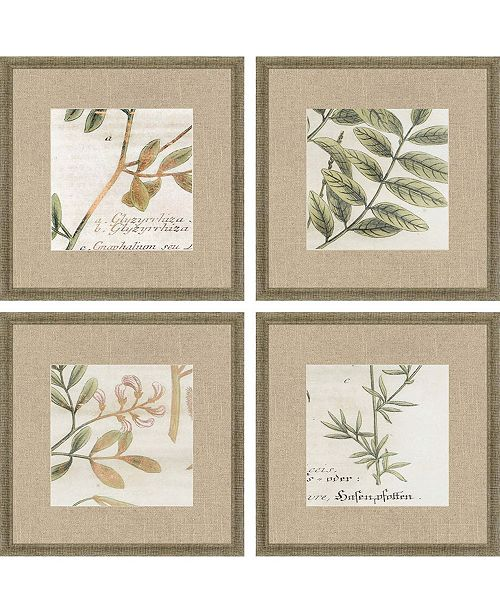 "Paragon Garden I Framed Wall Art Set of 4, 15"" x 15"""