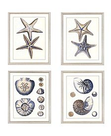 "Paragon Sea Life Framed Wall Art Set of 4, 22"" x 18"""