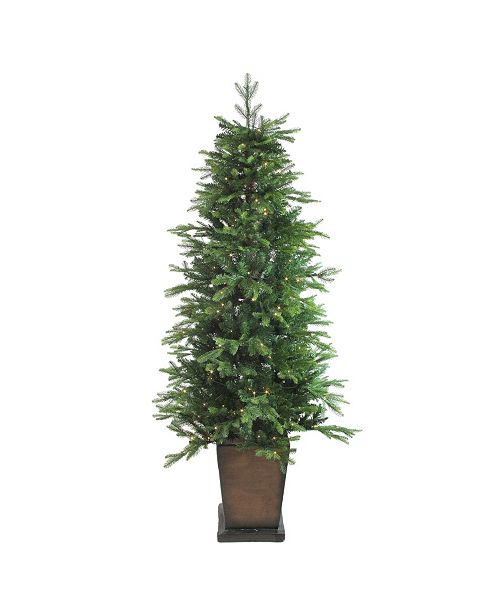 Northlight 6' Pre-Lit Potted Oregon Noble Fir Artificial Christmas Tree - Warm White LED Lights