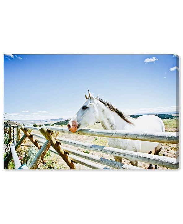 "Oliver Gal Cassandra Eldridge - Gracie The Horse Canvas Art, 36"" x 24"""