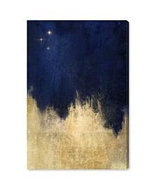 Stars At Midnight Canvas Art Collection