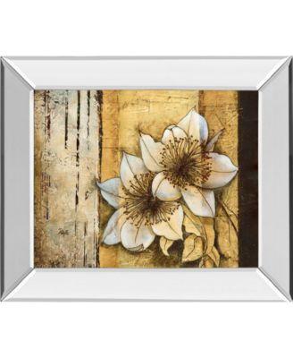 "Exotic on Gold I by Patty Q Mirror Framed Print Wall Art, 22"" x 26"""
