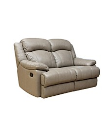 Quentin Leather Recliner Loveseat