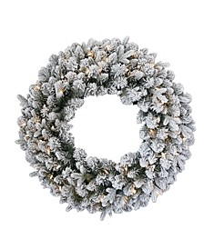 "24"" Iceland Fir Wreath with Battery Operated LED Lights"