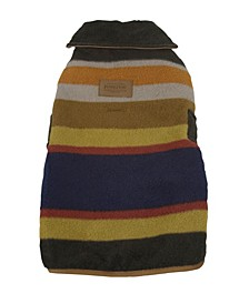 Badlands National Park Dog Coat, Small