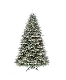 7.5 ft. Snowy Stonington Fir Tree with Dual Color® LED Lights