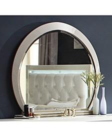 Acme Furniture Mirror