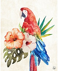 "Watercolor Tropical Macaw on Tan 24"" x 20"" Canvas Wall Art Print"