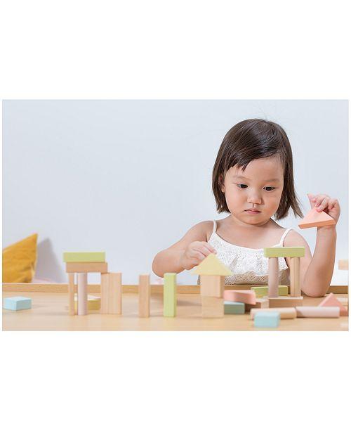 Plan Toys 40 Unit Blocks Reviews