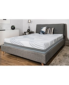 "Kerwick 12"" Plush Foam Mattress Set- King"