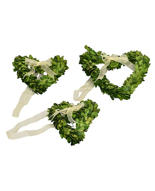 Mills Floral Preserved Boxwood Heart Wreaths - Set of 3 Wreaths