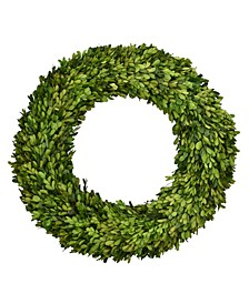"20"" D Preserved Boxwood Wreath"