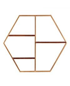 Briggs Hexagon Decorative Wall Shelf