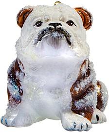 Bulldog Brown & White Snowy