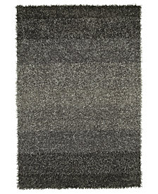 "Dalyn Metallics Shades Shag 5' x 7'6"" Area Rug"