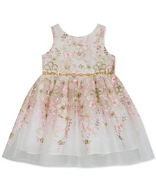 Baby Girls Floral-Embroidered Fit & Flare Dress