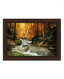 Autumn Stream Framed Photograph Print