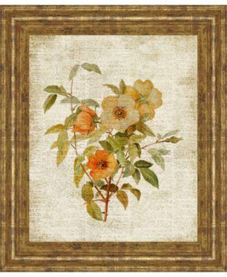 Roses on Newsprint Il by Lanie Loreth Framed Print Wall Art - 22