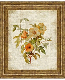 Roses on Newsprint by Lanie Loreth Framed Print Wall Art Collection