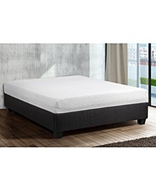 "Primo Tallie Deluxe 8"" Gel Memory Foam Cushion Firm Mattress - Queen"