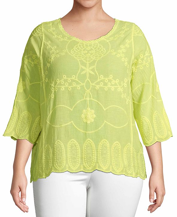 John Paul Richard Plus Size Embroidered 3/4-Sleeve Top