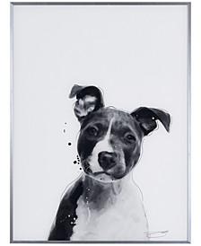 """Pit bull Pet Paintings on Reverse Printed Glass Encased with a Gunmetal Anodized Frame Wall Art, 24"""" x 18"""" x 1"""""""