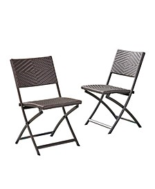 Winifred Outdoor Folding Chairs, Set of 2