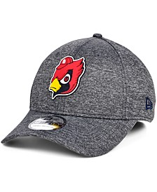 St. Louis Cardinals South Club 39THIRTY Cap