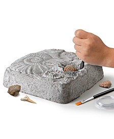 Toy Fossil Excavation Kit, 15 Pieces
