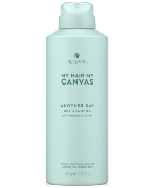 My Hair My Canvas Another Day Dry Shampoo