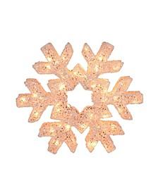 LED Lighted Snowflake Christmas Decoration