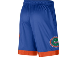 Jordan Florida Gators Men's Knit Shorts