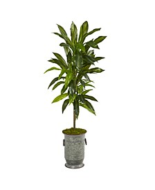 Dracaena Artificial Plant in Vintage-Inspired Metal Planter, Real Touch
